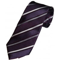 Boy's Purple Regular Tie 49""